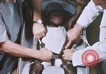 Image of Chimpanzee for spacecraft testing United States USA, 1960, second 37 stock footage video 65675023324