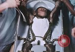 Image of Chimpanzee for spacecraft testing United States USA, 1960, second 47 stock footage video 65675023324