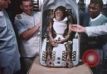Image of Chimpanzee for spacecraft testing United States USA, 1960, second 60 stock footage video 65675023324