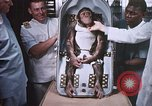 Image of Chimpanzee for spacecraft testing United States USA, 1960, second 61 stock footage video 65675023324