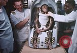 Image of Chimpanzee for spacecraft testing United States USA, 1960, second 62 stock footage video 65675023324