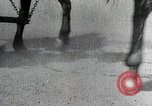 Image of Canton China Battle Canton China, 1938, second 37 stock footage video 65675025102