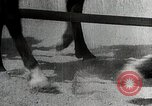 Image of Canton China Battle Canton China, 1938, second 39 stock footage video 65675025102