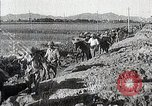 Image of Canton China Battle Canton China, 1938, second 60 stock footage video 65675025102