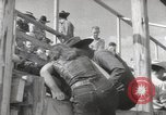 Image of Junior Rodeo John Day Oregon USA, 1954, second 5 stock footage video 65675027005
