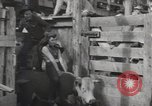 Image of Junior Rodeo John Day Oregon USA, 1954, second 15 stock footage video 65675027005