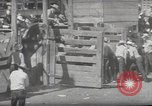 Image of Junior Rodeo John Day Oregon USA, 1954, second 51 stock footage video 65675027005