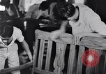 Image of children Philippines, 1934, second 27 stock footage video 65675028582