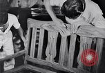 Image of children Philippines, 1934, second 31 stock footage video 65675028582