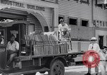 Image of children Philippines, 1934, second 62 stock footage video 65675028582