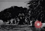 Image of Indian men India, 1947, second 26 stock footage video 65675028628