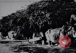 Image of Indian men India, 1947, second 33 stock footage video 65675028628