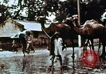 Image of Indian civilians India, 1965, second 5 stock footage video 65675028636