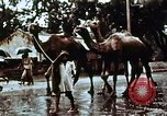 Image of Indian civilians India, 1965, second 6 stock footage video 65675028636