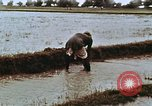 Image of Indian civilians India, 1965, second 14 stock footage video 65675028636
