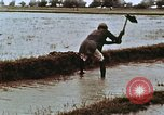Image of Indian civilians India, 1965, second 18 stock footage video 65675028636