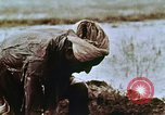 Image of Indian civilians India, 1965, second 21 stock footage video 65675028636