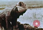 Image of Indian civilians India, 1965, second 23 stock footage video 65675028636