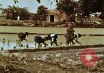 Image of Indian civilians India, 1965, second 39 stock footage video 65675028636