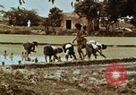 Image of Indian civilians India, 1965, second 40 stock footage video 65675028636