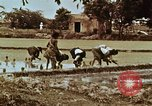 Image of Indian civilians India, 1965, second 42 stock footage video 65675028636
