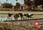 Image of Indian civilians India, 1965, second 43 stock footage video 65675028636