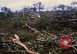 Image of Bulldozers and Rome plows Bein Hoa South Vietnam, 1967, second 10 stock footage video 65675029759