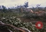Image of Bulldozers and Rome plows Bein Hoa South Vietnam, 1967, second 13 stock footage video 65675029759
