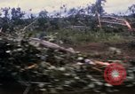 Image of Bulldozers and Rome plows Bein Hoa South Vietnam, 1967, second 15 stock footage video 65675029759