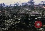 Image of Bulldozers and Rome plows Bein Hoa South Vietnam, 1967, second 16 stock footage video 65675029759