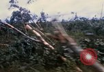 Image of Bulldozers and Rome plows Bein Hoa South Vietnam, 1967, second 22 stock footage video 65675029759