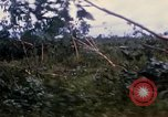 Image of Bulldozers and Rome plows Bein Hoa South Vietnam, 1967, second 23 stock footage video 65675029759
