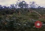 Image of Bulldozers and Rome plows Bein Hoa South Vietnam, 1967, second 24 stock footage video 65675029759