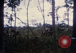 Image of Bulldozers and Rome plows Bein Hoa South Vietnam, 1967, second 27 stock footage video 65675029759