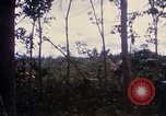 Image of Bulldozers and Rome plows Bein Hoa South Vietnam, 1967, second 28 stock footage video 65675029759