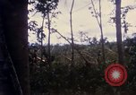Image of Bulldozers and Rome plows Bein Hoa South Vietnam, 1967, second 29 stock footage video 65675029759