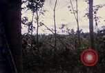 Image of Bulldozers and Rome plows Bein Hoa South Vietnam, 1967, second 30 stock footage video 65675029759