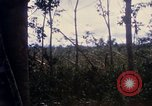 Image of Bulldozers and Rome plows Bein Hoa South Vietnam, 1967, second 31 stock footage video 65675029759