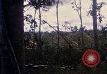 Image of Bulldozers and Rome plows Bein Hoa South Vietnam, 1967, second 33 stock footage video 65675029759
