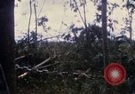 Image of Bulldozers and Rome plows Bein Hoa South Vietnam, 1967, second 37 stock footage video 65675029759
