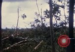 Image of Bulldozers and Rome plows Bein Hoa South Vietnam, 1967, second 41 stock footage video 65675029759