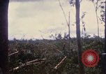 Image of Bulldozers and Rome plows Bein Hoa South Vietnam, 1967, second 43 stock footage video 65675029759