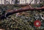 Image of Bulldozers and Rome plows Bein Hoa South Vietnam, 1967, second 54 stock footage video 65675029759