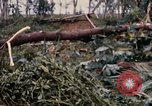 Image of Bulldozers and Rome plows Bein Hoa South Vietnam, 1967, second 55 stock footage video 65675029759
