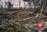 Image of Bulldozers and Rome plows Bein Hoa South Vietnam, 1967, second 57 stock footage video 65675029759