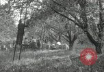 Image of apple orchards United States USA, 1916, second 49 stock footage video 65675030537