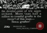 Image of apple grafting techniques United States USA, 1916, second 1 stock footage video 65675030538
