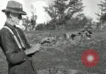 Image of apple grafting techniques United States USA, 1916, second 32 stock footage video 65675030538
