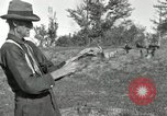 Image of apple grafting techniques United States USA, 1916, second 34 stock footage video 65675030538