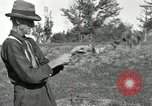 Image of apple grafting techniques United States USA, 1916, second 35 stock footage video 65675030538